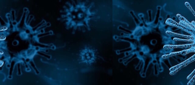 some viruses have Icosahedral Structures